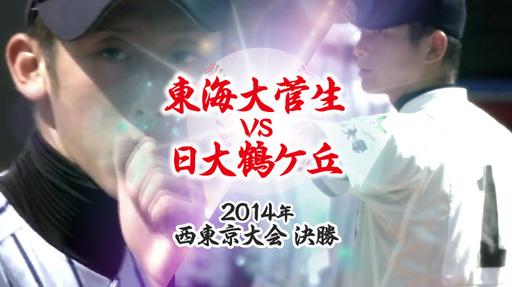 2014年 西・決勝|東海大菅生 - 日大鶴ケ丘