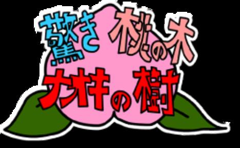 驚き桃の木ナオキの樹(お悩み相談)